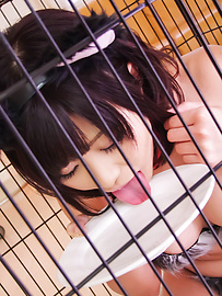 Aika Hoshino - Aika Hoshino wild cat fucks with vibrator - Picture 7