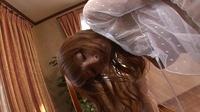 KIRARI 37 : 椎名ひかる ( ブルーレイ版 )  - ビデオシーン 2, Picture 43